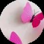 Pinks Jaj